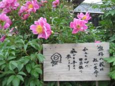 関市 迫間の家02